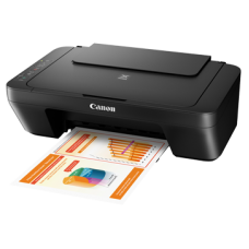 Canon Printer MG2570s